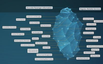 The Bus Passenger 'Iceberg': Making Sense of the Complex